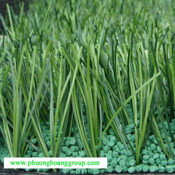 Giới thiệu về cỏ nhân tạo