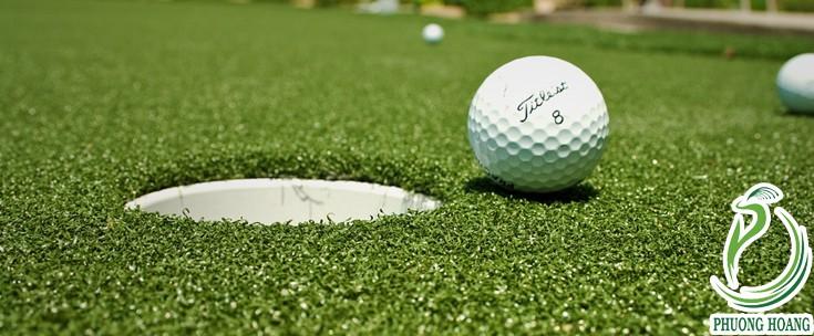 Một số hình ảnh sân golf