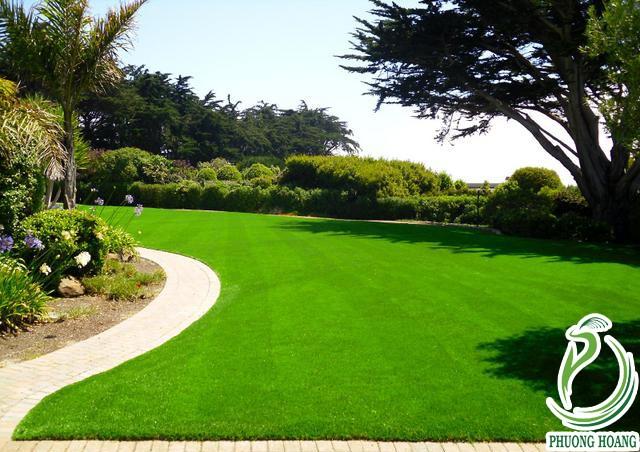 Cỏ nhân tạo sân vườn 1