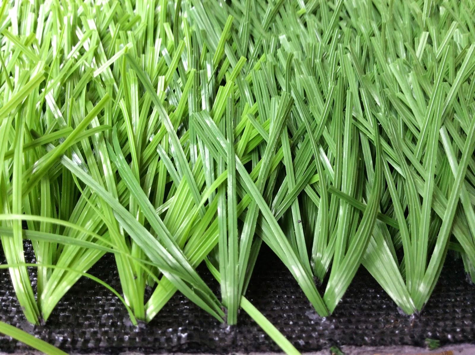 Mẫu cỏ sân bóng Phượng Hoàng